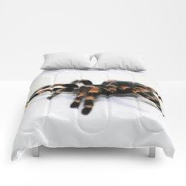 Tarantula Comforters