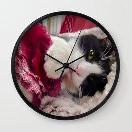 Orazio very sweet cat Wall Clock