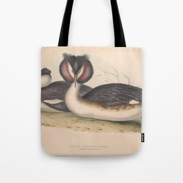 GREAT CRESTED GREBE (2) Tote Bag