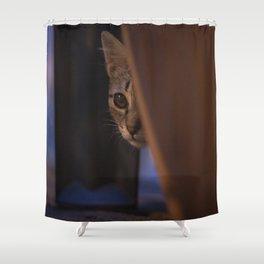 Little cat Shower Curtain