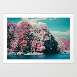 Lakeside Infrared Art Print