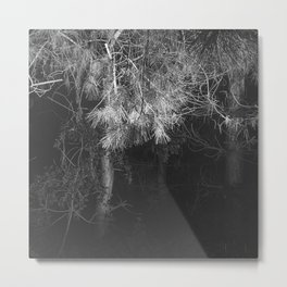 Night Pine Wood Metal Print