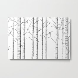 The birch forest Metal Print