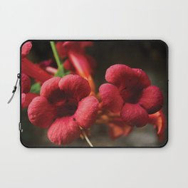Hanging Pretty Laptop Sleeve