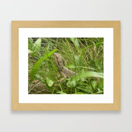 LOST IN THE GRASS Framed Art Print