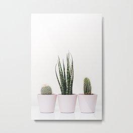 Trendy cactus plants Metal Print