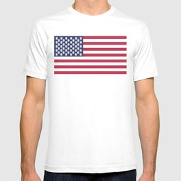 usa dollar flag T-shirt