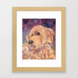 Golden Doodle Framed Art Print