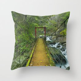 Kawazu waterfall trail, Izu Peninsula, Japan Throw Pillow