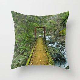 Kawazu waterfall trail, Izu Peninsula, Japan Throw Pillow