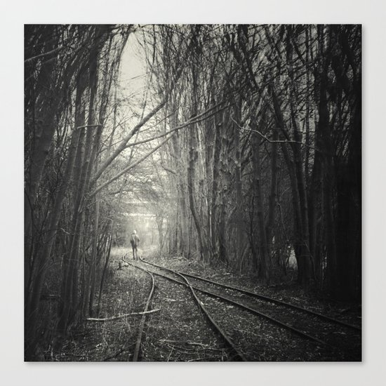 from darkness into light Canvas Print