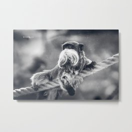The unbelievable truth Metal Print