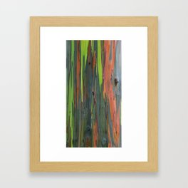 Rainbow Eucalyptus Abstract colorful Tree Bark Framed Art Print