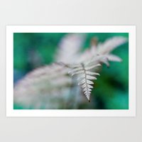 fern Art Prints featuring fern by Bonnie Jakobsen-Martin