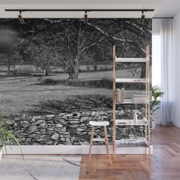 Infra Red Shadows Wall Mural