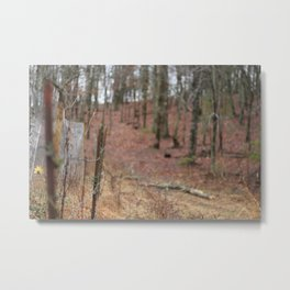 Barbwire Fence Metal Print
