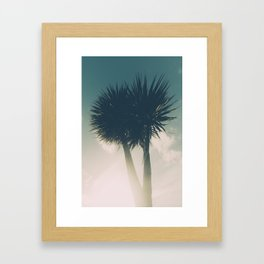 Sun blasted Palm trees Framed Art Print