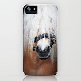 Haflinger Stallion iPhone Case