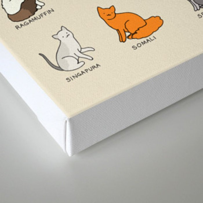 Cat Breeds Canvas Print