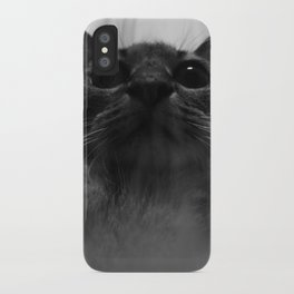 a cat iPhone Case