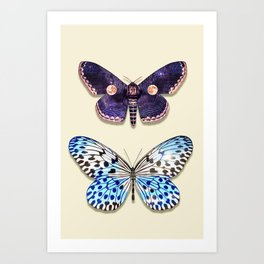 NIGHT & DAY BUTTERFLY Art Print
