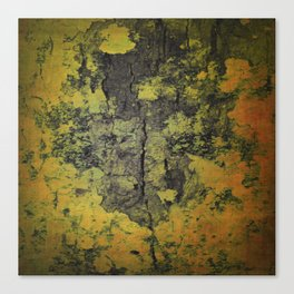 Rugged bark texture Canvas Print