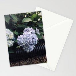 Hydrangeas & Hose Stationery Cards