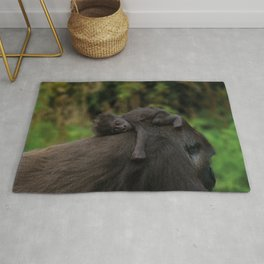 Baby Gorilla Holding On To Her Mother Rug