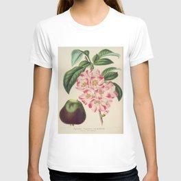 Cydonia Japonica Vintage Botanical Floral Flower Plant Scientific T-shirt