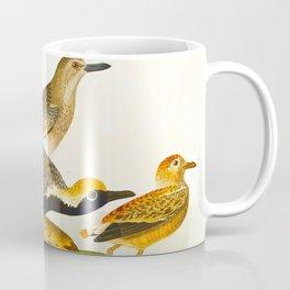 Grey plover John Audubon vintage scientific bird illustration Coffee Mug