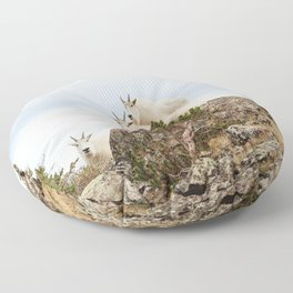 Three Ami-Goats // Scenic Hike Animals Photograph Colorado Wildlife National Park Mountain Goats Floor Pillow