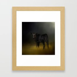 Black Angus Calf In The Moonlight Framed Art Print