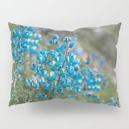 Resurrection Blue Pillow Sham