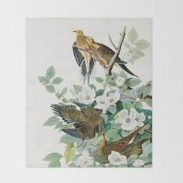 Carolina Turtle Dove, Birds of America by John James Audubon Throw Blanket