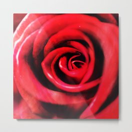 PASSION IN RED Metal Print