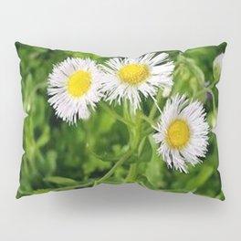 Daisy Awakening Pillow Sham