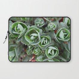 Hylotelephium spectabile Laptop Sleeve
