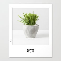 Chives planter poster hebrew label Canvas Print