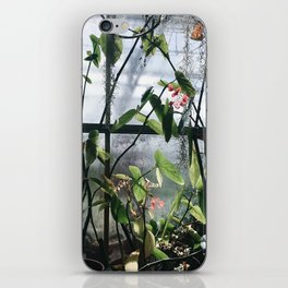 greenhouse iPhone Skin