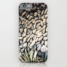 cactus... iPhone 6s Slim Case