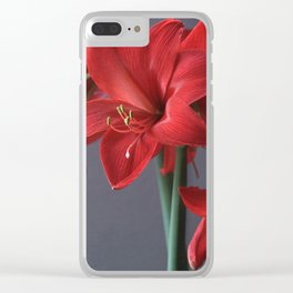 Red Amaryllis Flower Clear iPhone Case