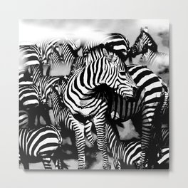 ZEBRA: GO YOUR OWN WAY Metal Print