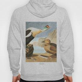 King duck, Birds of America, Audubon Plate 276 Hoody