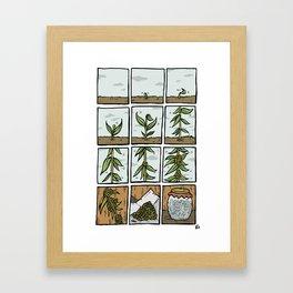 Spring fruit Framed Art Print