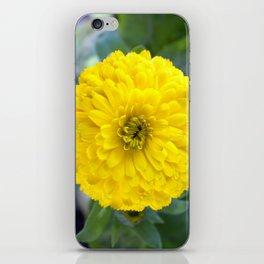 Wet Yellow iPhone Skin