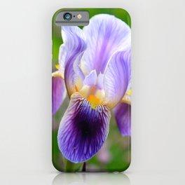 Iris Aglow iPhone Case