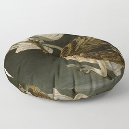 171 Barn Owl Floor Pillow