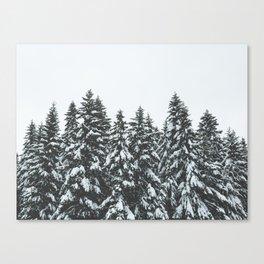 SNOWY TREETOPS Canvas Print