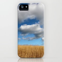 A dramatic Cloudy Sky over a Golden Field iPhone Case