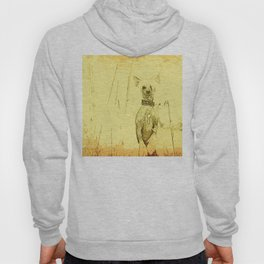 Chinese crested 23 Hoody
